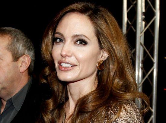 Анджелина джоли отрицает обвинения в плагиате