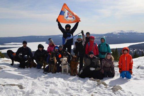 Кинолог никита сытин: челябинские собаки-спасатели успешно сдали экзамен на горе зюраткуль - «новости челябинска»