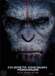 Рецензия к фильму планета обезьян: революция. обезьяны на лошадях