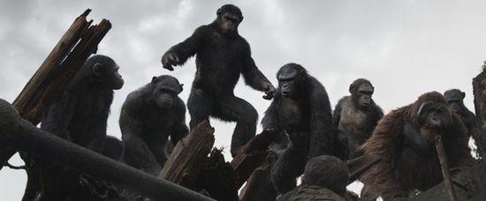 Рецензия на фильм «рассвет планеты обезьян»