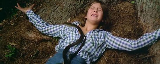 Роковой треугольник — отзыв на триллер распутное детство, год 1977-ой